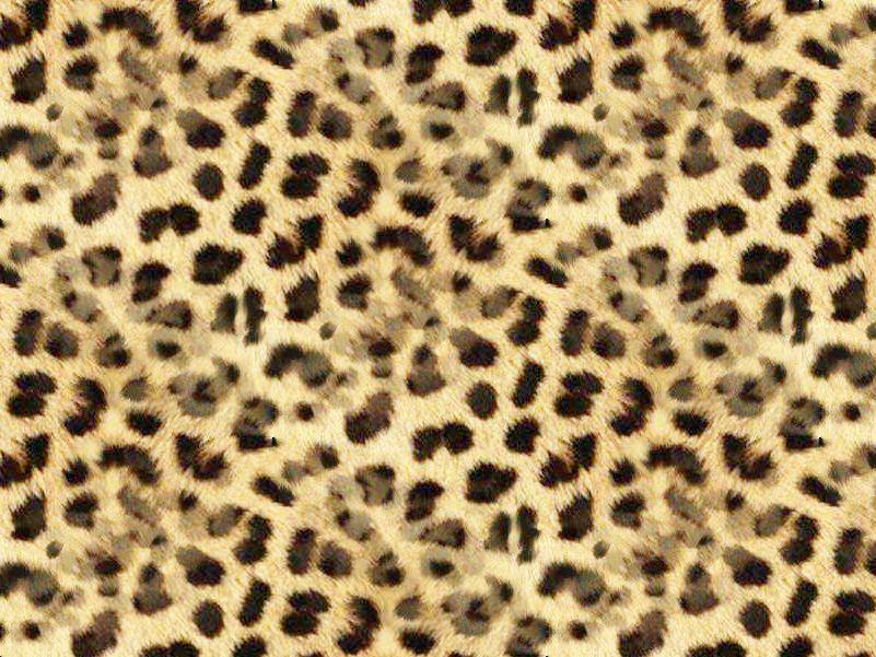Zoom Dise 209 O Y Fotografia Texturas Animal Print Fondos