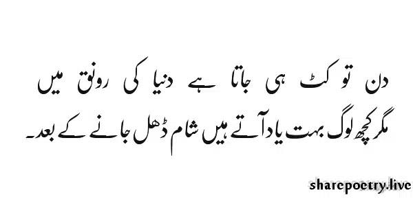 Din To Kat Hi Jata Hai Duniya Ki Rounaq Mein Yaad Poetry