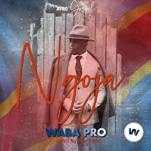 Waba Pro | Ngoja