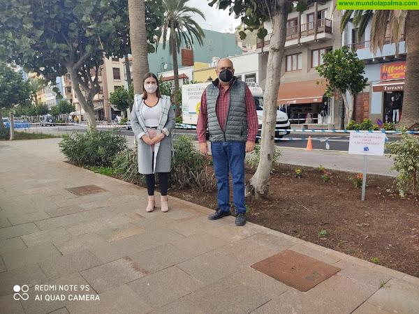 La Asociación de Empresarios del Casco Histórico pone en marcha la campaña para apadrinar jardines en Santa Cruz de La Palma