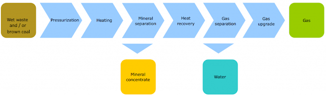 Supercritical Water gasification of wet biomass and low-grade coal