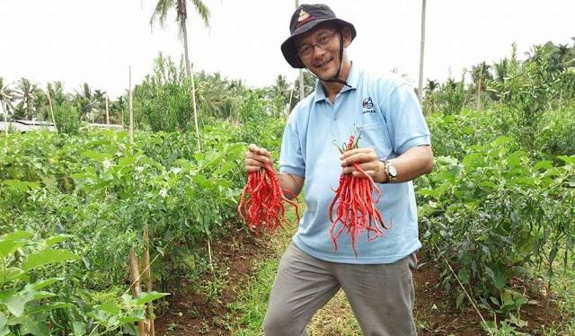 Klarifikasi Hasril Chaniago ke Arteria Dahlan Soal 'Cucu Pendiri PKI'