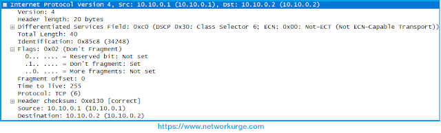 IP Header Details, IP Header, IP Header Wireshark Capture