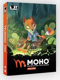 Moho Pro 13 (formerly Anime Studio)