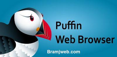 تحميل برنامج متصفح بوفين puffin browser pro للكمبيوتر
