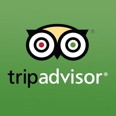 TripAdvisor Effect: how much we are influenced by reviews