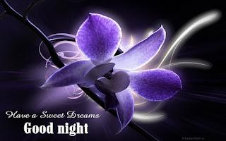Lovers Good Night Image