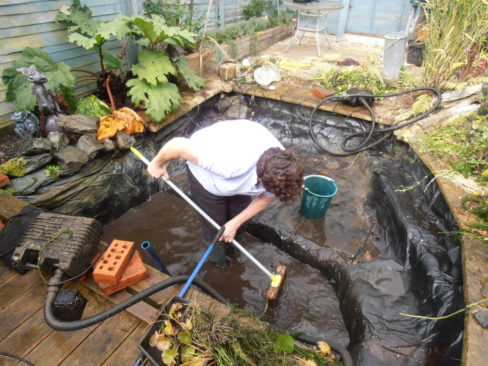 Woodlandsworld2 cleaning the fish pond for Pond cleaning fish