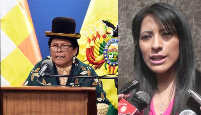 Ministerio de Culturas se sumará a la querella contra la ex ministra