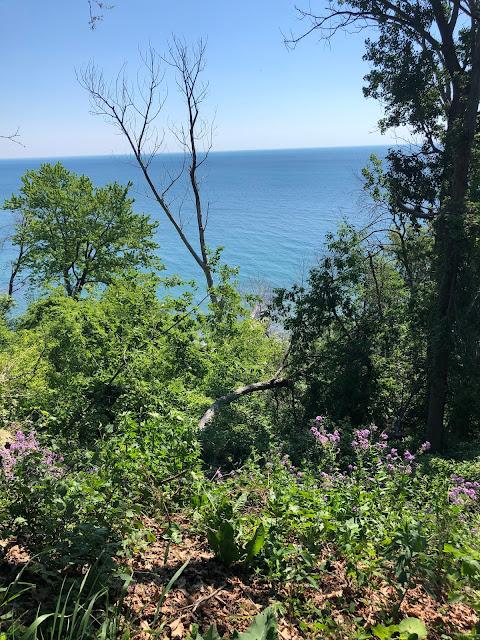 Turquoise Lake Michigan expands beyond rugged terrain.