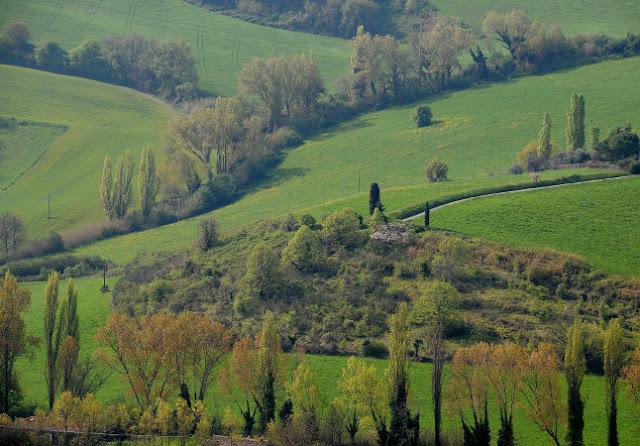 Parco del Monte San Bartolo