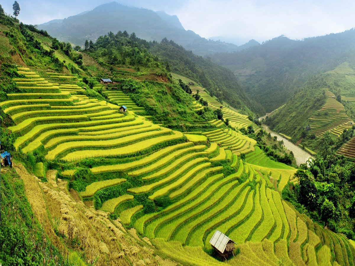Commune with Nature. Visit PH Banawe Rice Terraces!! Click it!!!