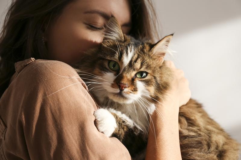 Kedi ve köpeğe alerjisi olanlara alerji aşısı yapılabiliyor