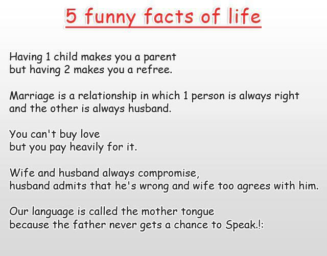 Funny Jokes Of Married Life: All The Funny Ones ! : Marriage Joke