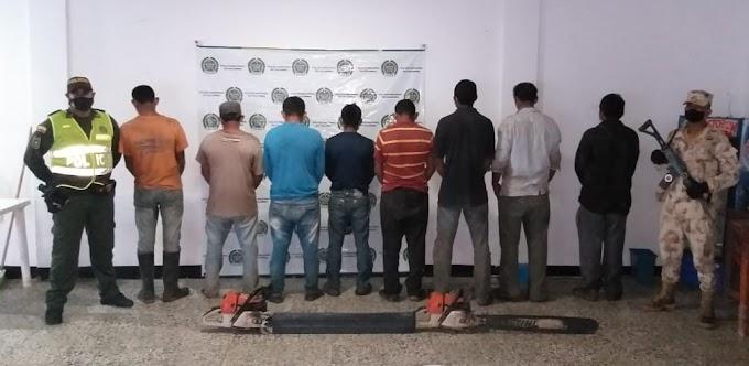 Aprehenden a  ocho hombres por tala indiscriminada de árboles en Sabanas De San Ángel, Magdalena