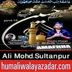 http://audionohay.blogspot.com/2014/10/ali-mohdsultanpur-nohay-2015.html