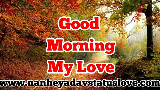 Good Morning Quotes,Good Morning Quotes Love,Best Good Morning Quotes