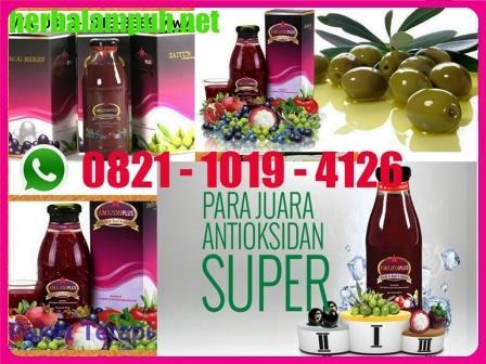 Amazon Plus Herbal