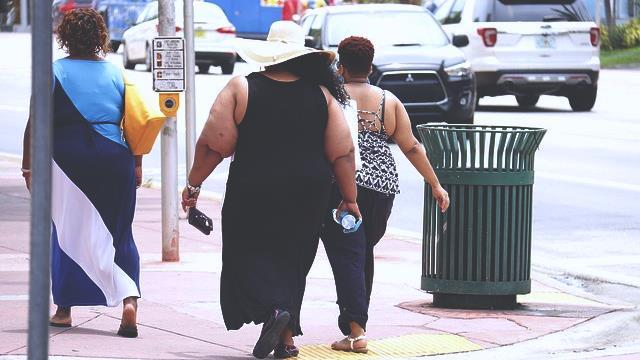 wanita gemuk