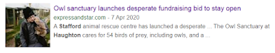 https://www.expressandstar.com/news/environment/2020/04/08/owl-sanctuary-launches-desperate-fundraising-bid-to-stay-open/