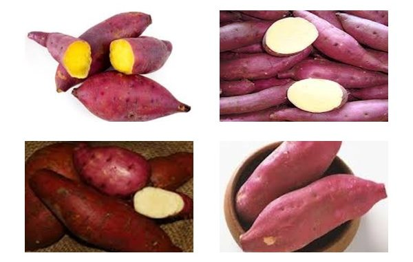 10 Reasons Why Sweet Potatoes are Best For Diabetes Patients
