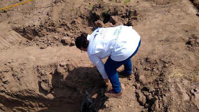 """Encuentran una fosa común de posibles """"falsos positivos"""" en Colombia en medio de excavaciones para fallecidos por coronavirus"""