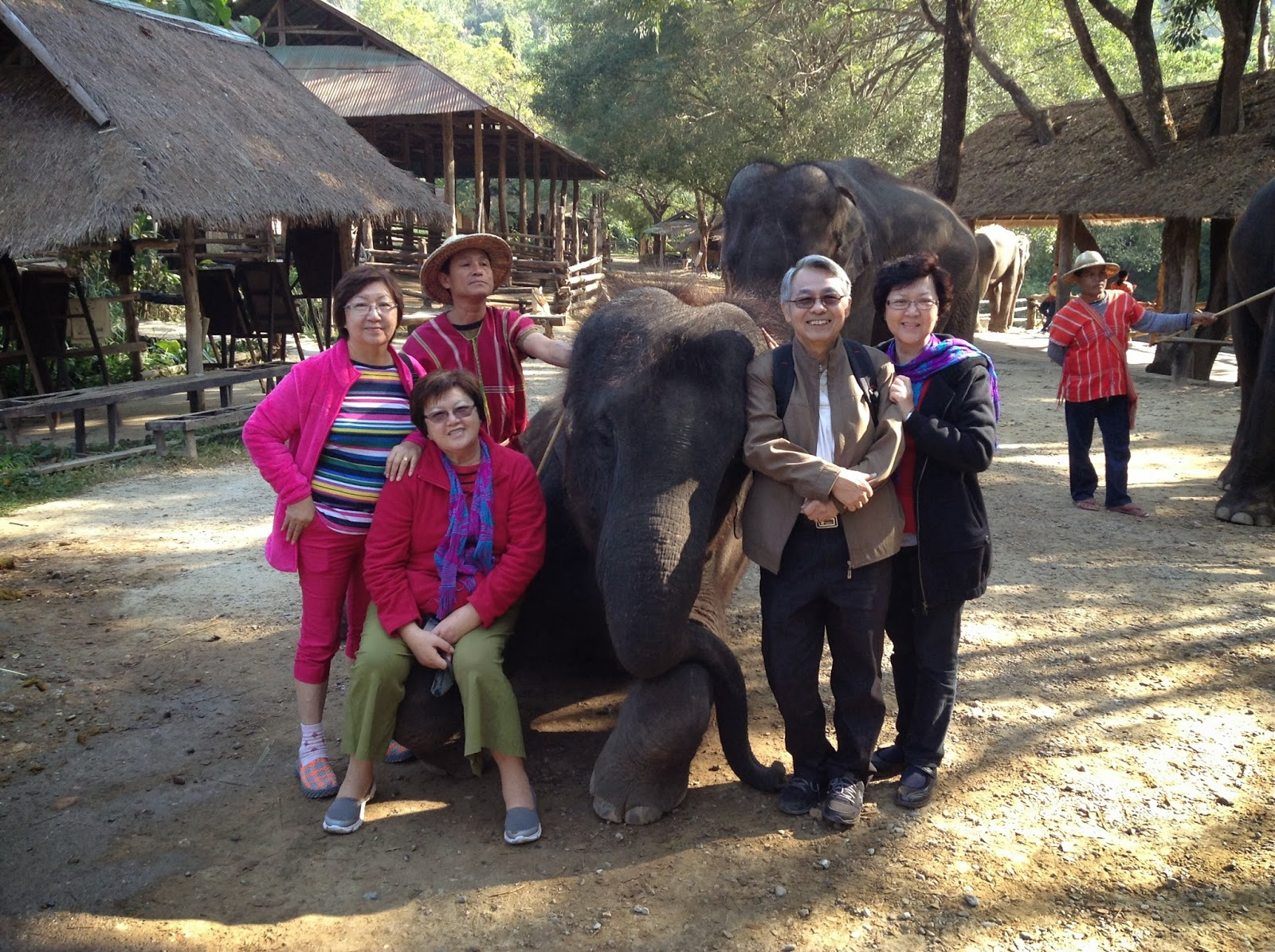 Colour of Time: At one Elephant Sanctuary in Chiang Mai