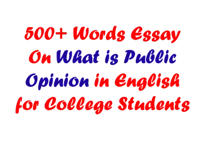 What is Public Opinion Essay in 500 Words For Students