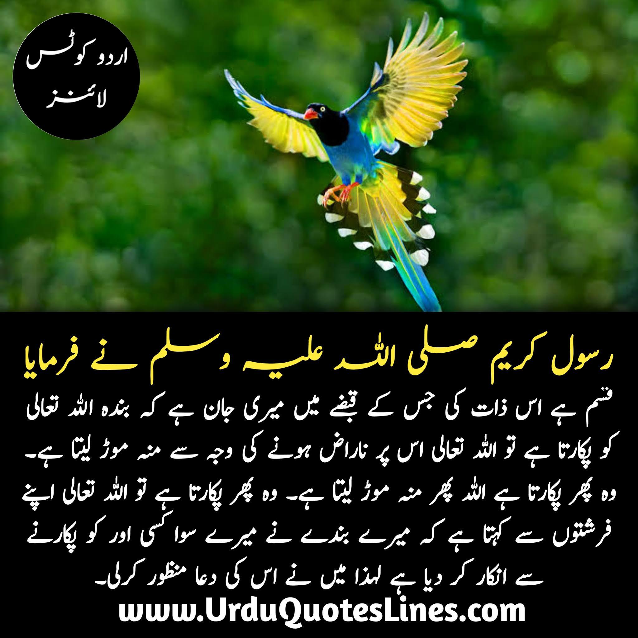 Prophet Muhammad Urdu Quotes Lines About Islam