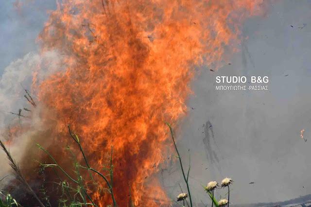 75 πυρκαγιές το τελευταίο 24ωρο - Υψηλός ο κίνδυνος στην Αργολίδα