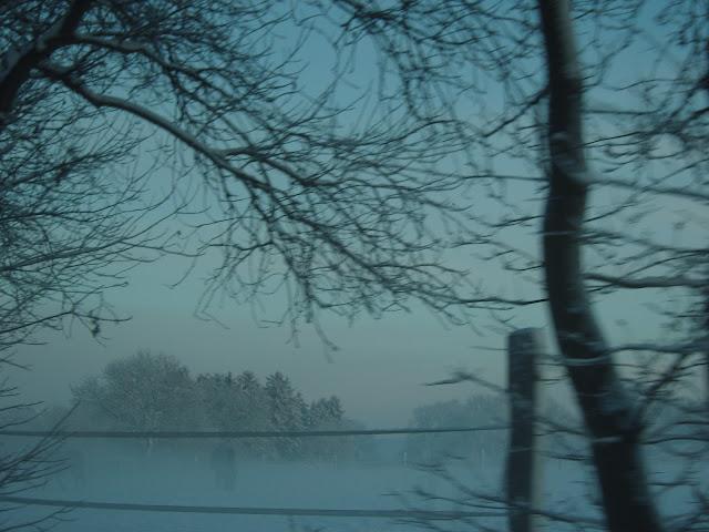 http://www.introversi.com/2012/03/der-letzte-baum-gottfried-keller.html