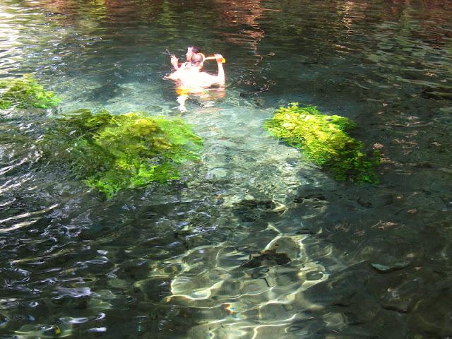 Pengunjung yang sedang snorkeling di kolam Sumber Sira