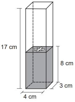 Para a coluna de água chegar até essa altura, é necessário colocar dentro do recipiente bolinhas de volume igual a 6 cm3 cada, que ficarão totalmente submersas.