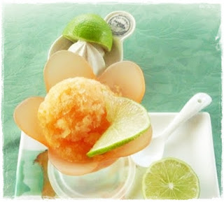 melon-sorbet-recipe