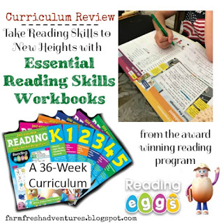 Reading Eggs Workbooks--Product Review