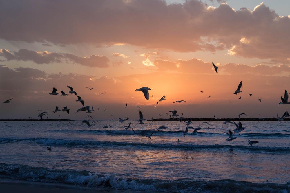 Costa Croisière voyage en mer Baltique