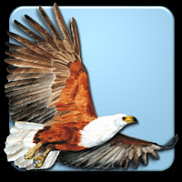 Roberts Multimedia Birds of SA Apk Download for Android
