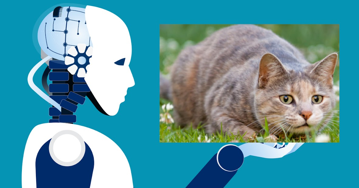 AI v. a kitten: or what is AI cloning? (just click on the picture)
