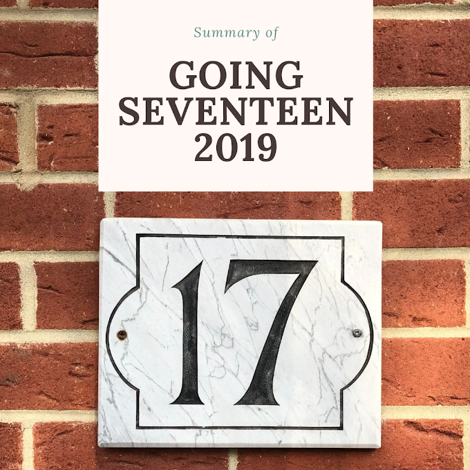 Summary of 'Going Seventeen 2019'