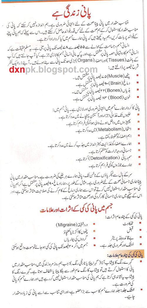 Water pollution essay in urdu