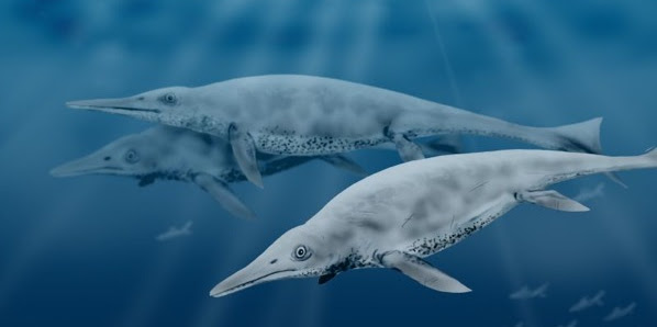 Inilah 10 Monster Bawah Laut Prasejarah yang Menakutkan