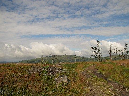 Barania Góra ze szczytu Glinnego.