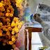 196 νέα κρούσματα κορωνοϊού στη χώρα - Ένα νέο στα Γιάννενα