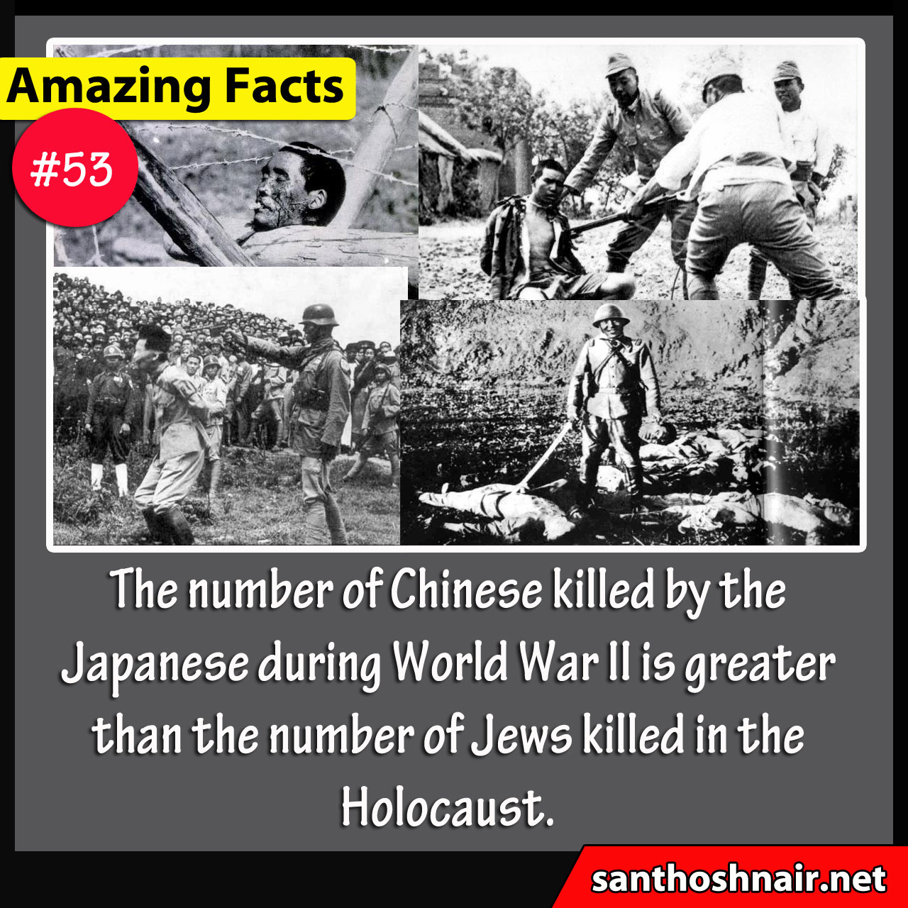 Amazing Facts #53 - Chinese Killed during WWII