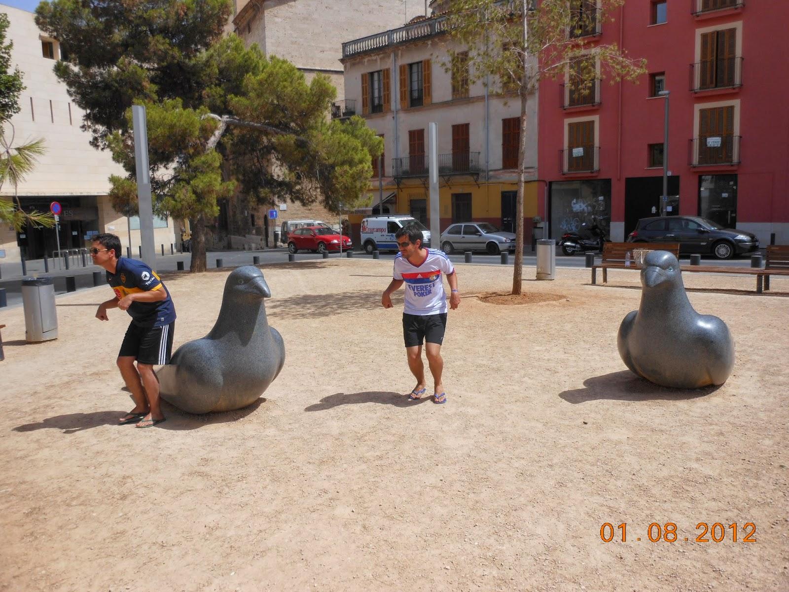 4 pombos gigantes graças à alimentação à base de azeitonas - Palma de Maiorca - Espanha
