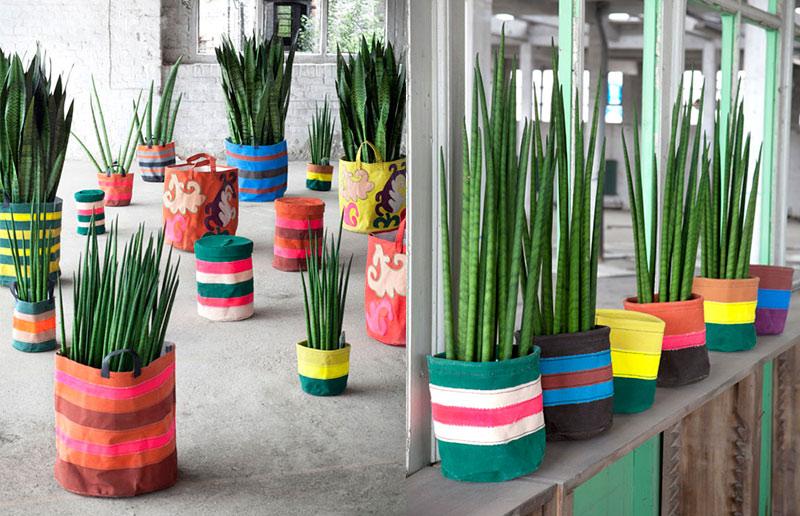 espada-de-são-jorge em sacolas coloridas
