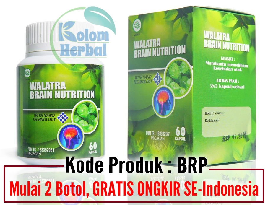 Testimoni Brain Nutrition