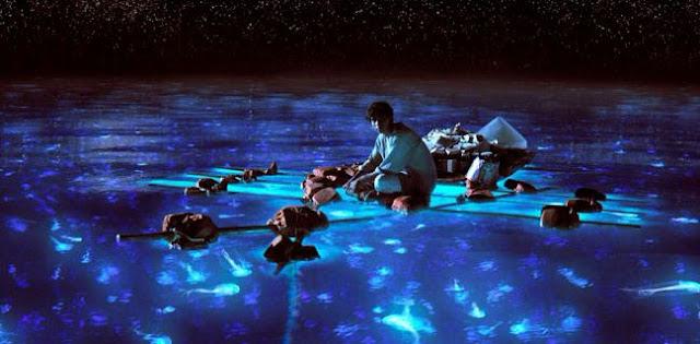 la_vida_de_pi_oceano_universo