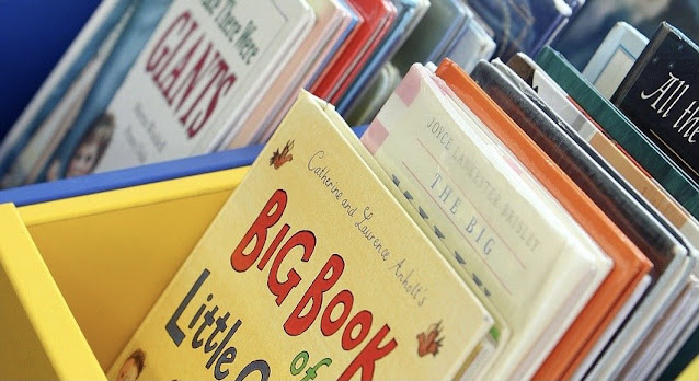 Image of elementary level picture books in a classroom library book bin