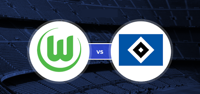 Wolfsburg vs Hamburger SV Highlights